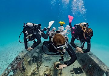 Scuba Diver - Potápěč s přístrojem