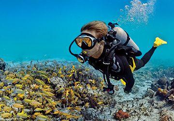 Master Scuba Diver - Mistr potápěč - Specialista v 5 oblastech
